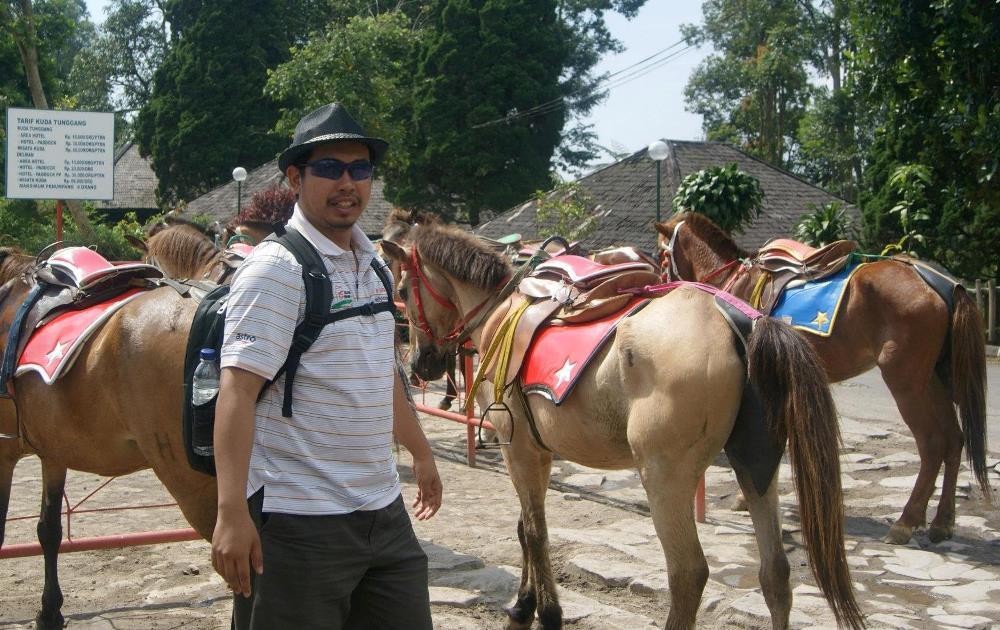 Kuda Bandung Indonesia