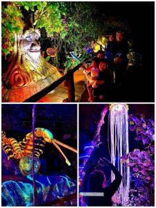 Luminous Forest Lost World of Tambun